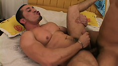 Hot gay stud massages his own cock and balls while his lover pounds his ass
